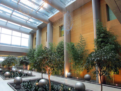 Image of atrium with wood paneled wall.